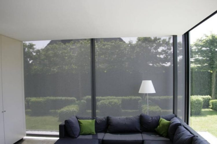 blinds-screen-protector
