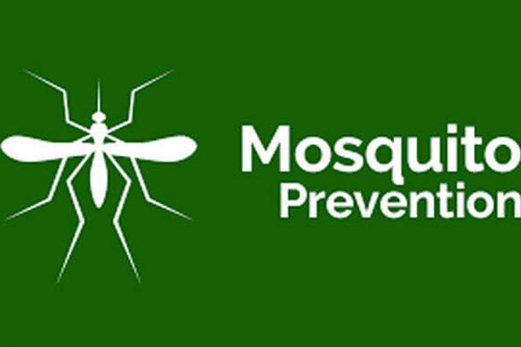 mosquito-prevention